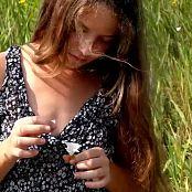 Wild Kitty HD Video 080 120518 mp4