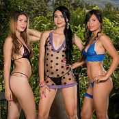 Poli Molina Tammy Molina and Ximena Gomez Triple Treat Group 10 TM4B Set 010 009bTkRM