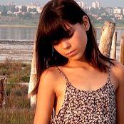 Steppe Flower HD Video 290