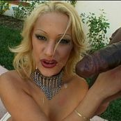 Shyla Stylez Lewd Conduct 12 DVDR Video