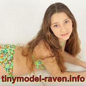 TinyModel Raven Set 378 Promo 065