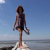 Steppe Flower HD Video 309