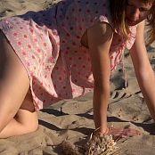 Petal Stone HD Video 369